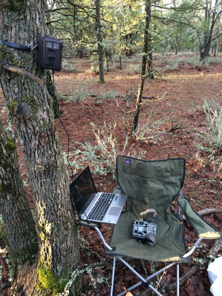 Downloading the data from the Bushnell.